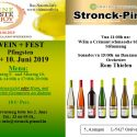 WINE TASTE ENJOY 2019